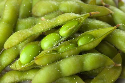 賞味期限 消費期限 冷凍食品 枝豆