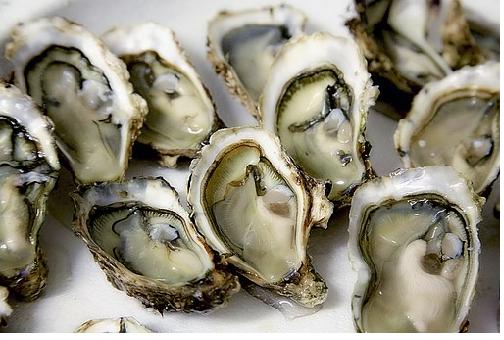 牡蛎 冷凍 賞味期限