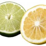レモンとライムの保存方法や賞味期限について