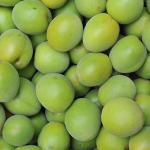 梅シロップを作った後の残った梅と賞味期限について