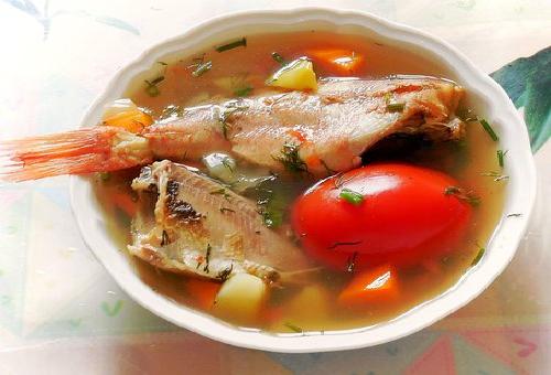 賞味期限 魚 出汁