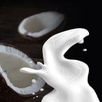 ココナッツミルクの賞味期限はどのくらい?紙パックに入っている賞味期限は?