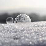 ぶりの賞味期限を長くする冷凍保存と解凍のやり方