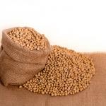 大豆の賞味期限はどれくらい?真空パックされている水煮は?