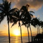 ハワイ土産で人気のクッキーコーナーの商品の賞味期限について