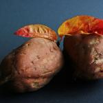 さつまいもの煮物の賞味期限と保存方法や栄養価、効能は?