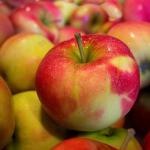 保存方法次第でりんごの賞味期限が2ヶ月!?半年!?