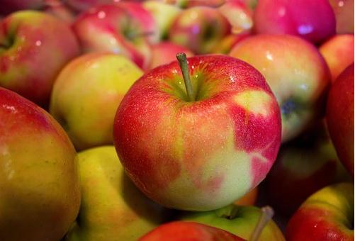賞味期限 りんご 2ヶ月 半年