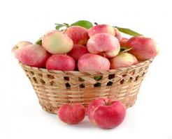 賞味期限 りんご 常温 冷蔵庫