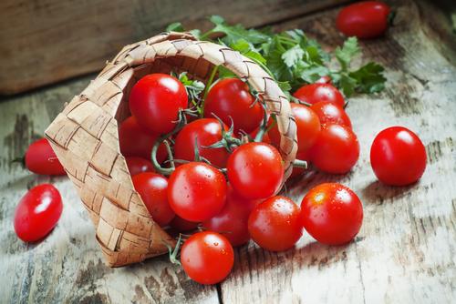 賞味期限 プチトマト 冷蔵庫 常温 冷凍