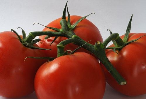 賞味期限 ぶよぶよ 柔らかい トマト 見た目