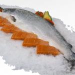 ぶり・鱈・サーモンの切り身の賞味期限と保存方法を徹底的に紹介!