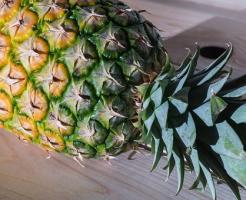 賞味期限 丸ごと パイナップル 冷凍 冷蔵 常温