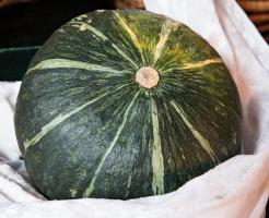 賞味期限 丸ごと かぼちゃ 冷蔵庫 常温